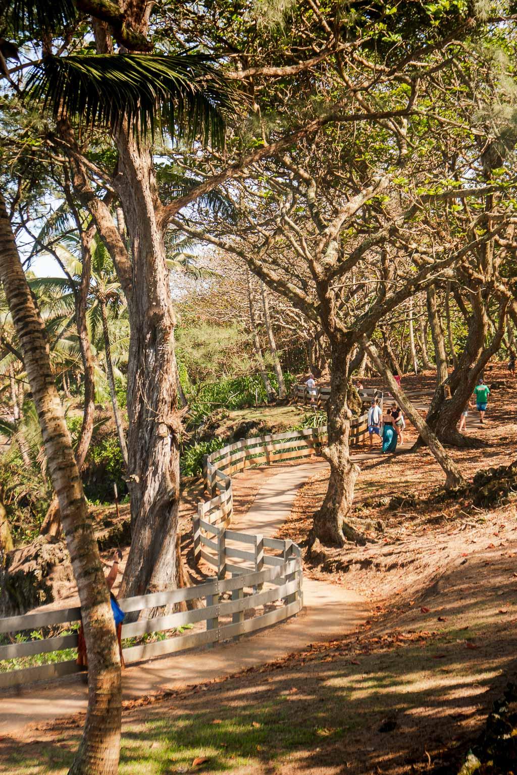 Waianapanapa State Campground, Maui, Hawaii