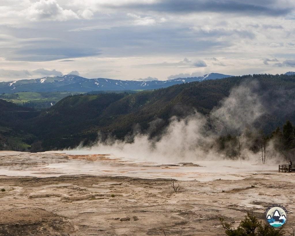 Mammoth hot spring geysers, Yellowstone, Wyoming