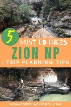 Zion NP Pin