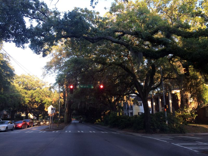 Driving in Savannah