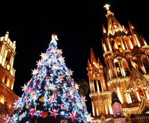 Christmas tree in the Jardin, San Miguel de Allende, Mexico