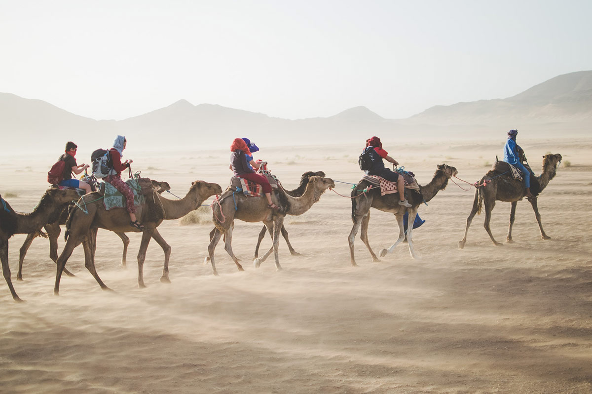 A camel caravan treks across the Sahara in Morocco. Time to wrap up in a close turban for protection from sun and sand and head into adventure!