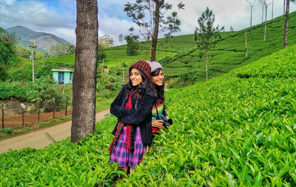 Ooty Tea Plantation, Things do to in Ooty