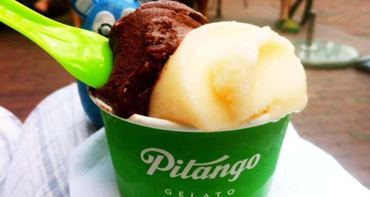 Chocolate Noir from Pitango Gelato