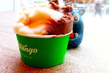 Dark Chocolate & Peach from Pitango Gelato