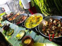 Waterfall Buffet from Villa Escudero Philippines