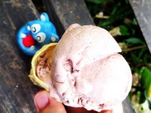 Chocolate & Honey Ice Cream from Bohol Bee Farm Bohol Philippines