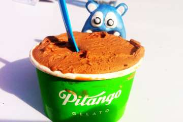 Chocolate Hazelnut from Pitango Gelato