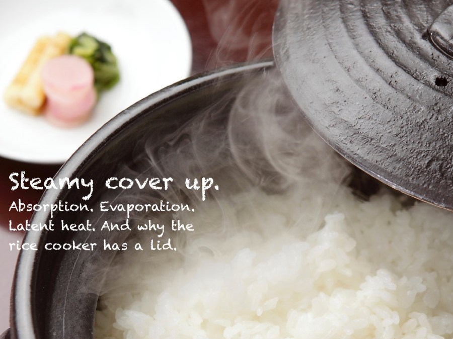 rice cooker lid
