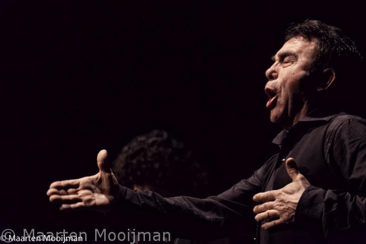 Singers flamenco