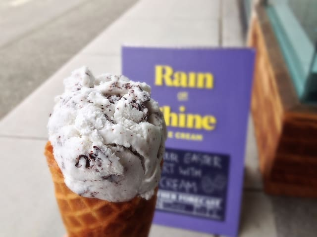 Rain or Shine Ice Cream Vancouver (Kitsilano)   Coconut Chocolate Chunk Ice Cream