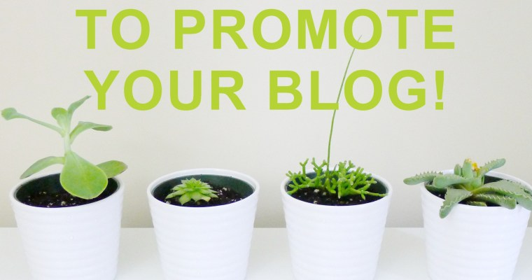How To Use Bloglovin To Promote Your Blog |More Followers