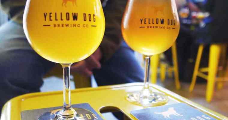 Yellow Dog Brewing Port Moody | Tri-Cities Craft Beer