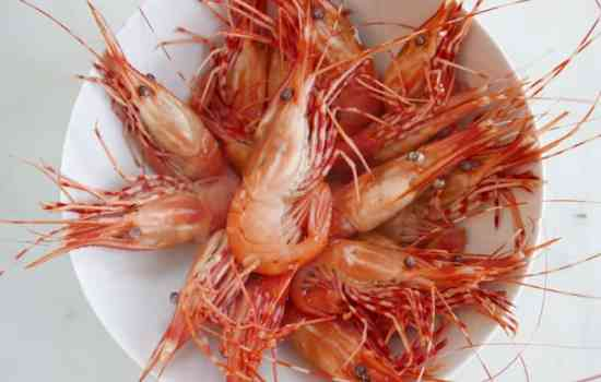 How to Cook and Eat Spot Prawns