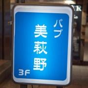pub_jp2