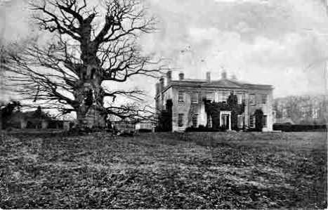 A winter view of the house and the Majesty Oak from the south-east