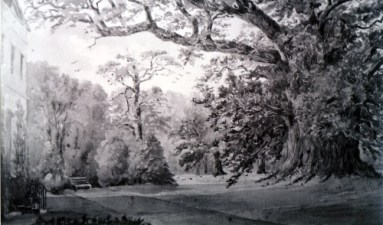 The Majestie Oak, an undated water-colour by an unknown artist, probably mid-19th century.