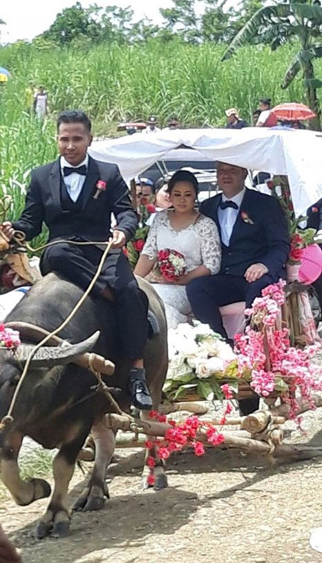 Carabao Carroza as wedding vehicle in Bingawan Iloilo