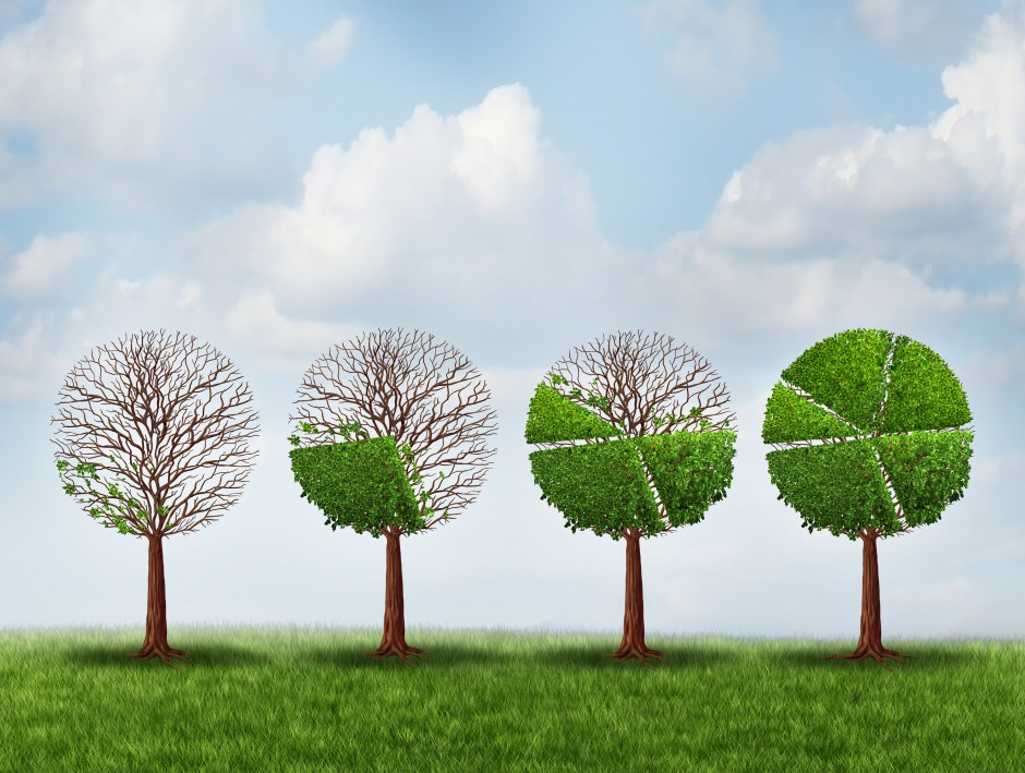 Economic prosperity financial concept as a group of green trees shaped as growing finance pie chart as a metaphor for gradual gains in company stock or competitive wealth success.