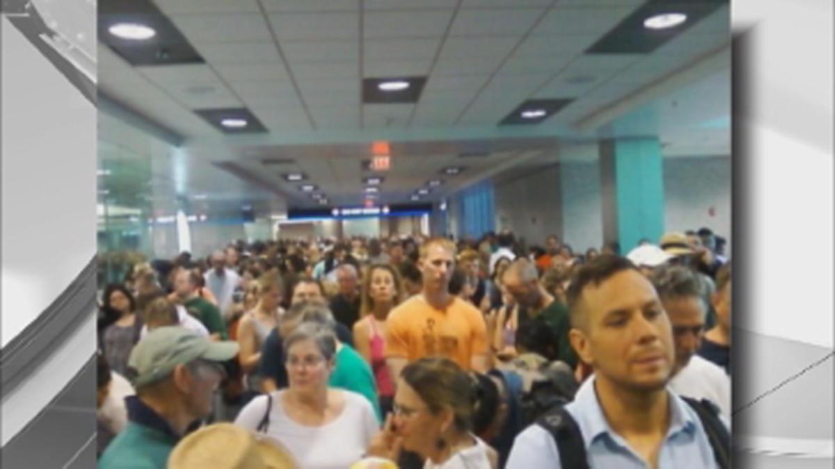 Customs Lines