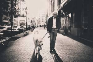 Una passeggiata di 15 minuti col cane fatta regolarmente