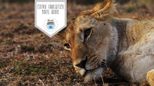 Centro Tutela e Ricerca Fauna Esotica e Selvatica di Monte Adone