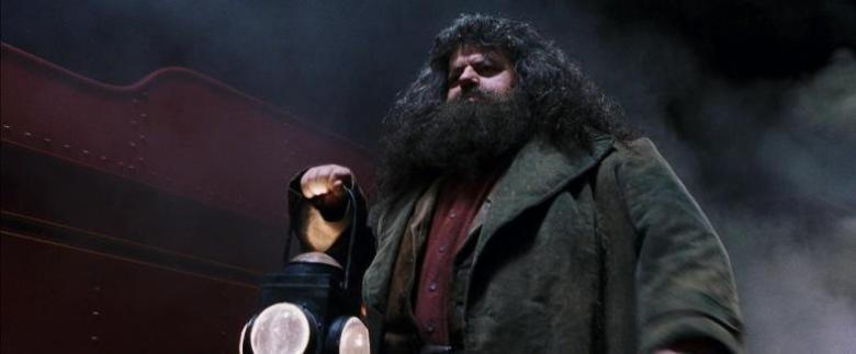 Harry Potter e la pietra filosofale citazioni e dialoghi di Chris Columbus con Daniel Radcliffe, Rupert Grint, Emma Watson, Hagrid, treno