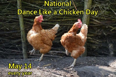 Dance Like a Chicken Day is May 14