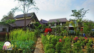 Review Radateeree Resort