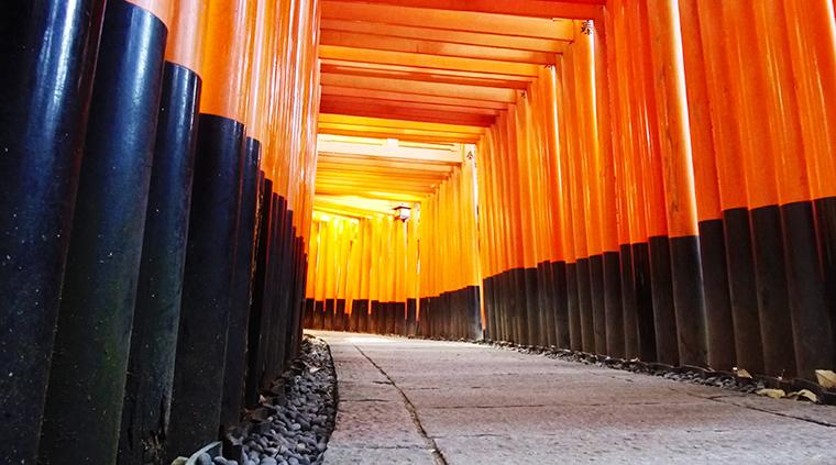 พาเที่ยวเกียวโต 1 วัน ไป Fushimi Inari Shrine