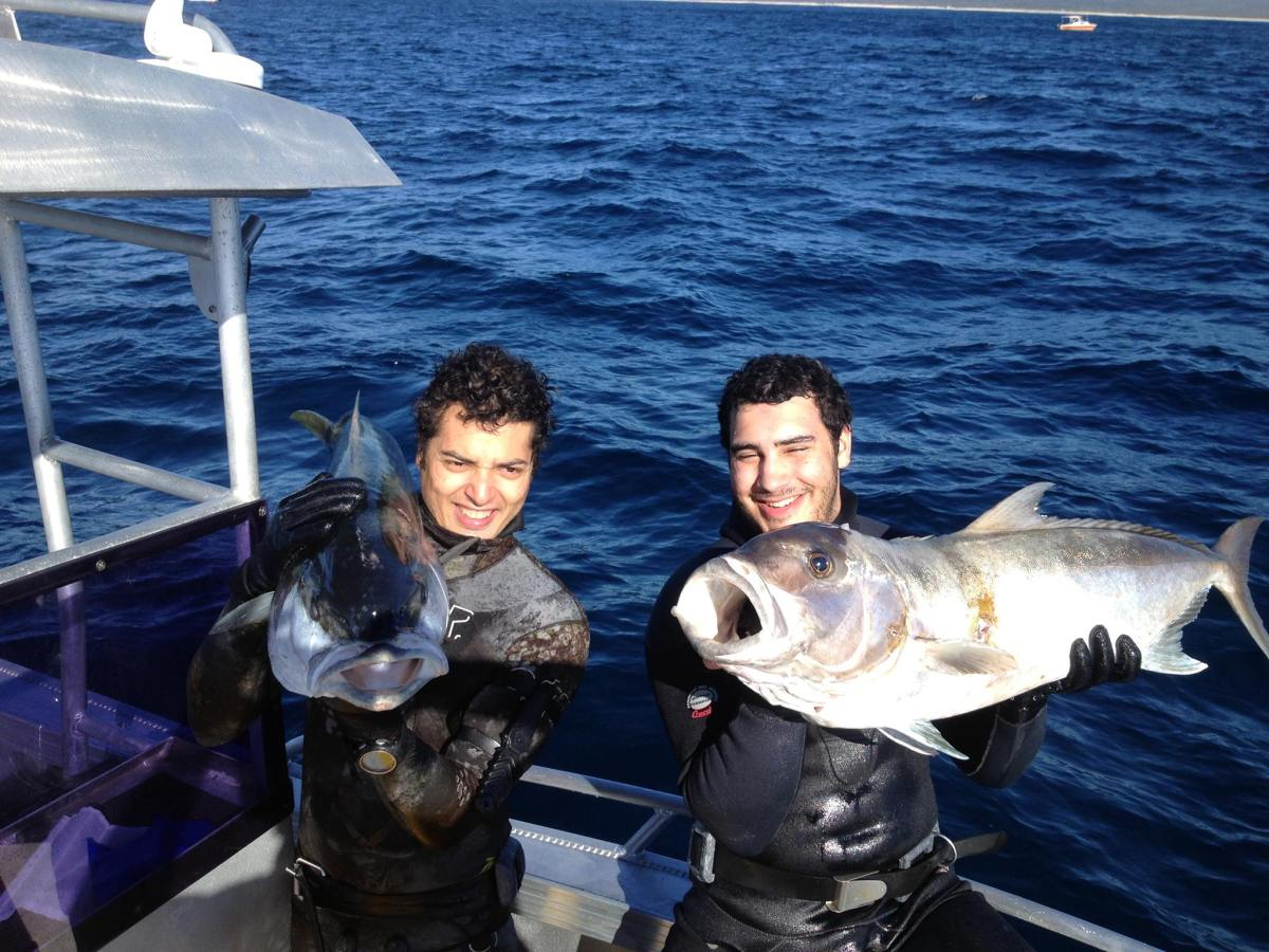 Get Started Spearfishing Guide. Ayman Abdin Left Yellowtail Kingfish. Cliff Harvey Right Sampsonfish