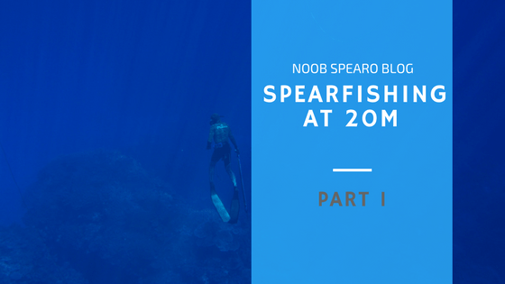 the physiology of spearfishing at 20m