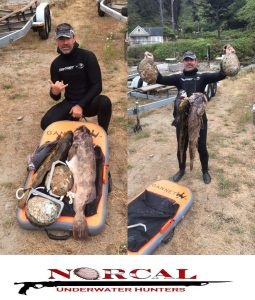 North California Underwater Hunters President Matt Mattison