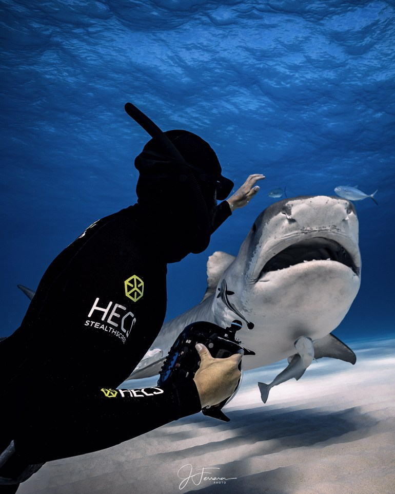 HECS wetsuits Spearfishing technology