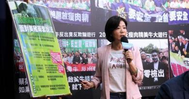 國民黨文傳會主委王育敏轟蔡政府「雙標又獨裁」。(黃世麒攝)