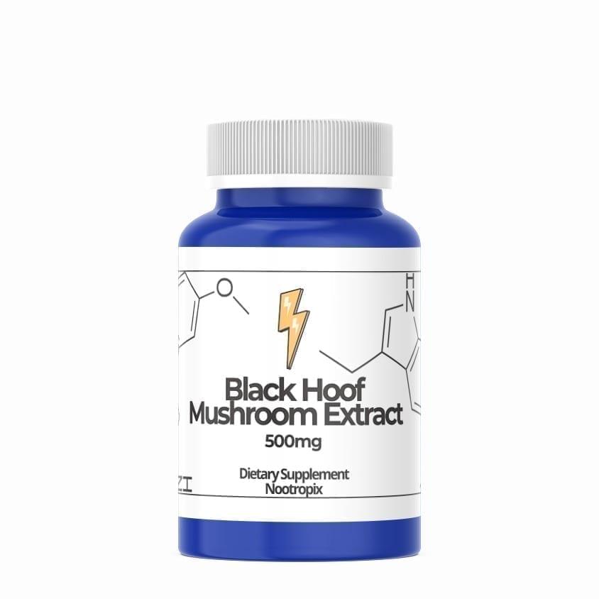 black hoof mushroom extract 500mg capsules nootropics uae