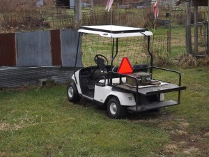 Solar Electric Golf Cart