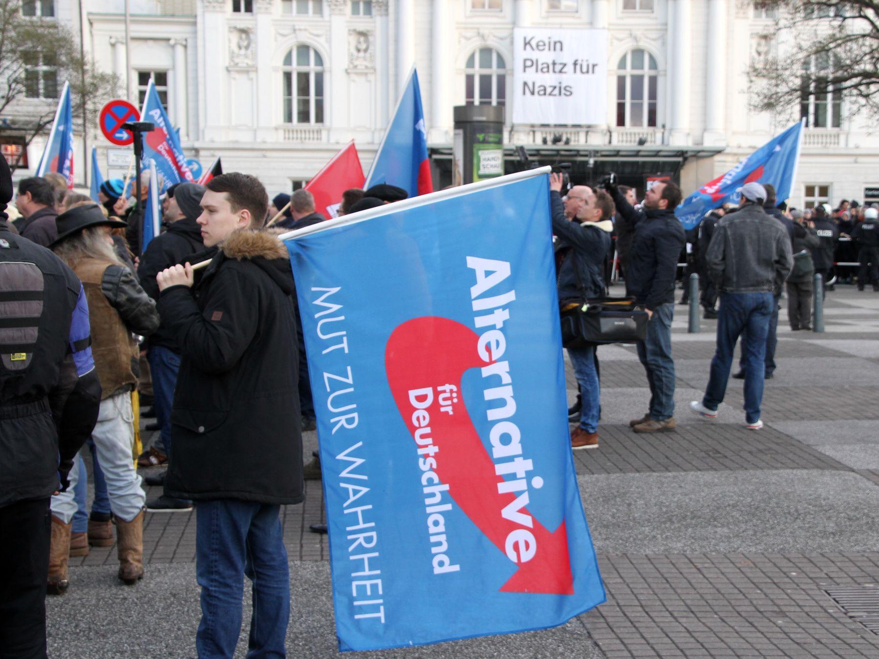 AFD, Kundgebung, Schauspielhaus, Hamburg, Kein Platz für Nazis