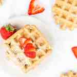 Vegan Whole Grain Flax Waffles