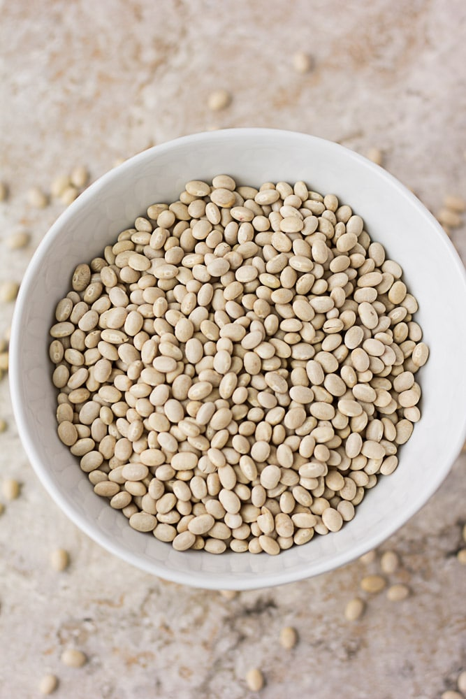 bowl of dried navy beans