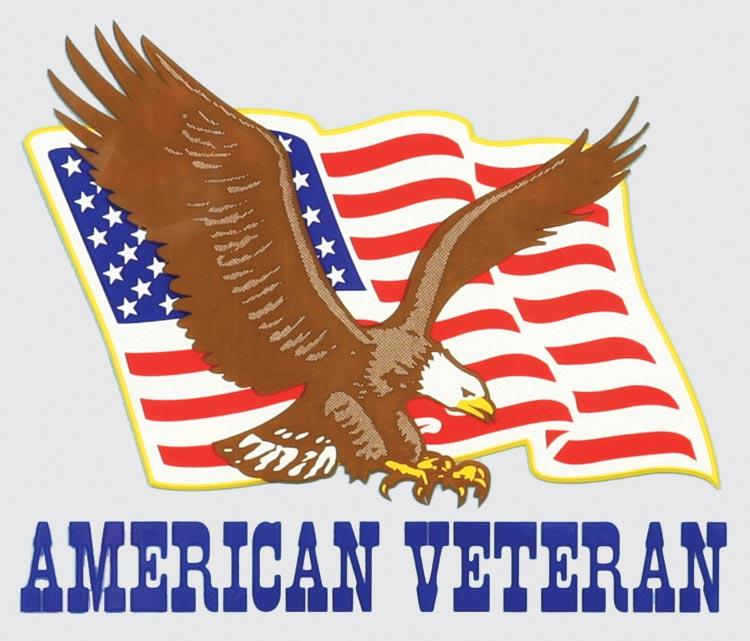 Coast Guard Veteran Flag