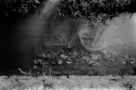 Bike, beaten by the nature