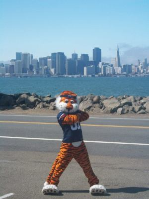 Aubie in SF
