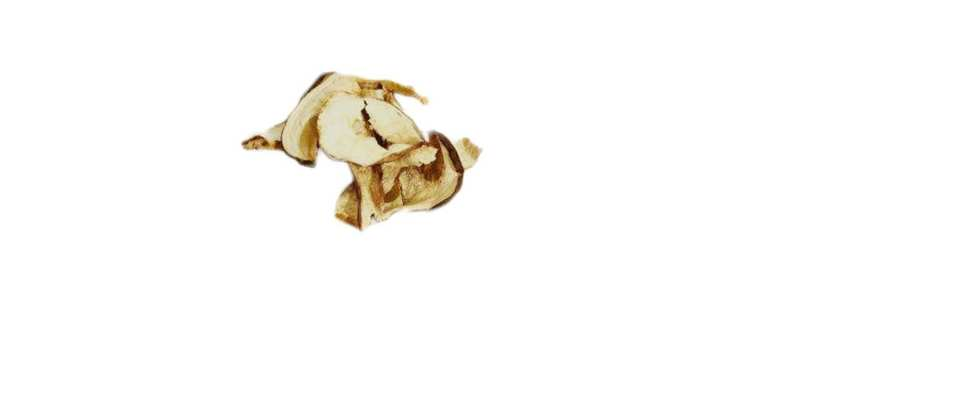 Funghi Porcini Categoria Commerciale