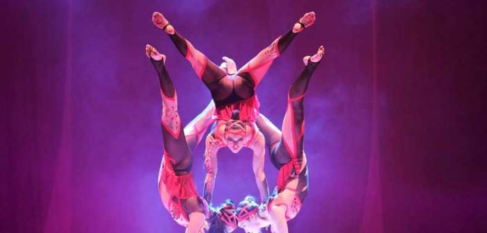 Le Cirque with the World's Top Performers ALIS