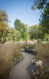 Garten des Friedens in Arras, © Yann Monel