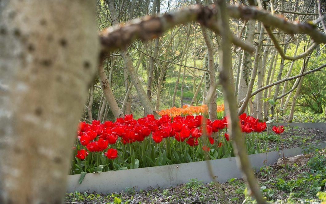 Die Gärten des Friedens in Nordfrankreich