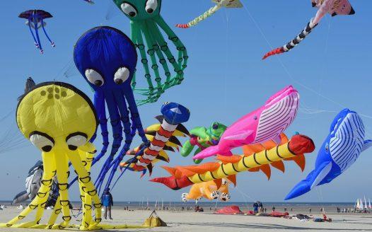 © Rencontres Internationales de Cerfs Volants de Berck sur Mer