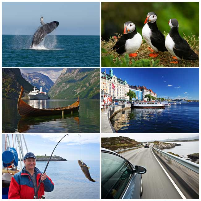 Best Northern Lights Cruises