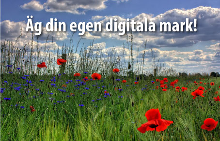 Äg din egen digitala mark!